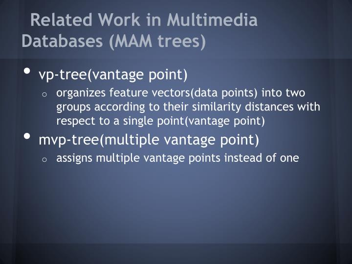 Related Work in Multimedia Databases (MAM trees)