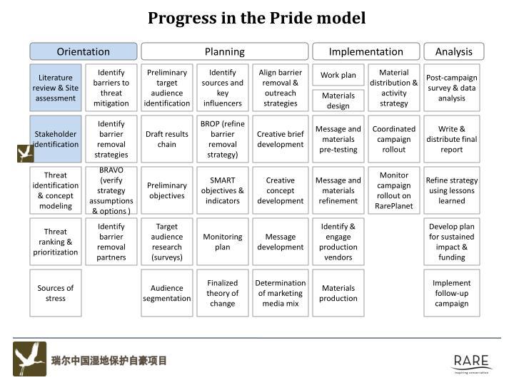Progress in the Pride model