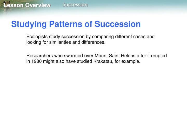 Studying Patterns of Succession