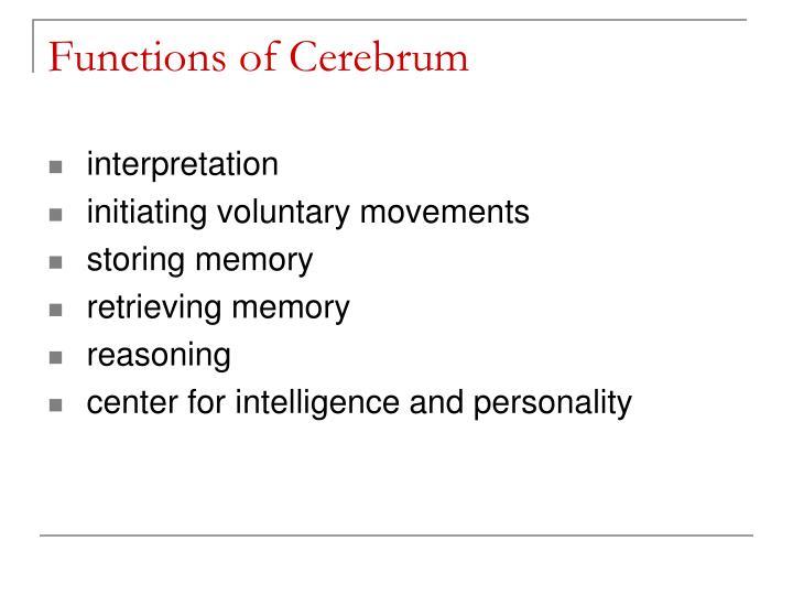 Functions of Cerebrum