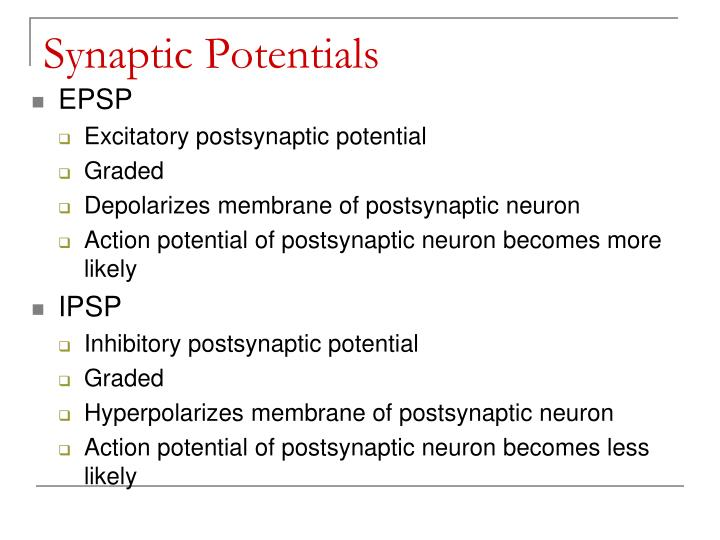 Synaptic Potentials