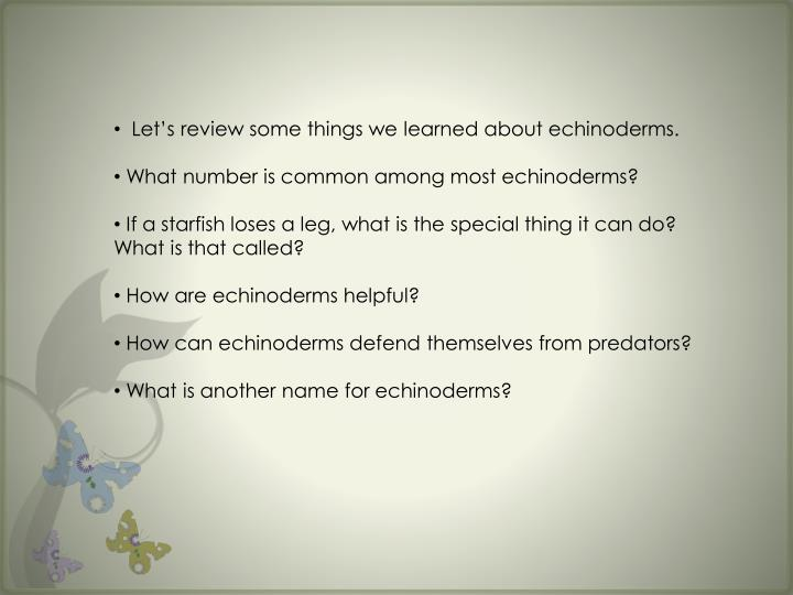 Let's review some things we learned about echinoderms.