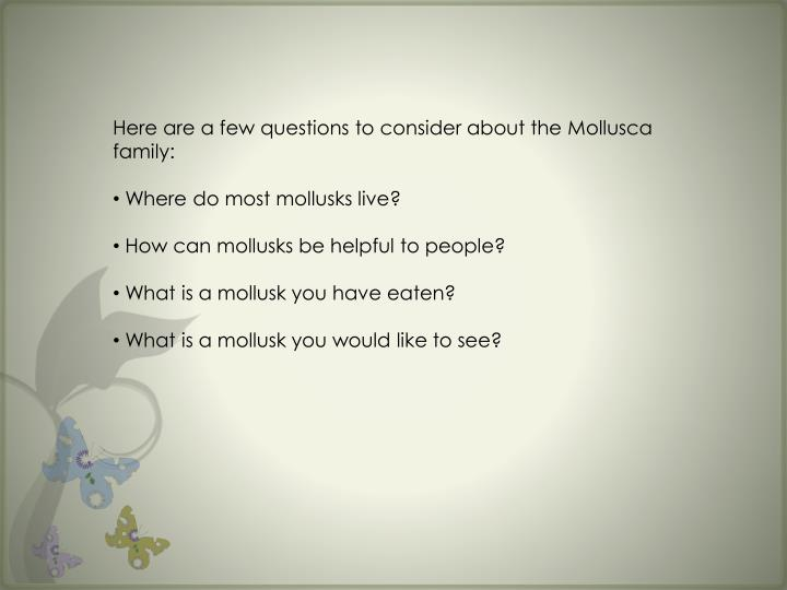 Here are a few questions to consider about the Mollusca family: