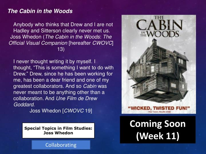 The Cabin in the