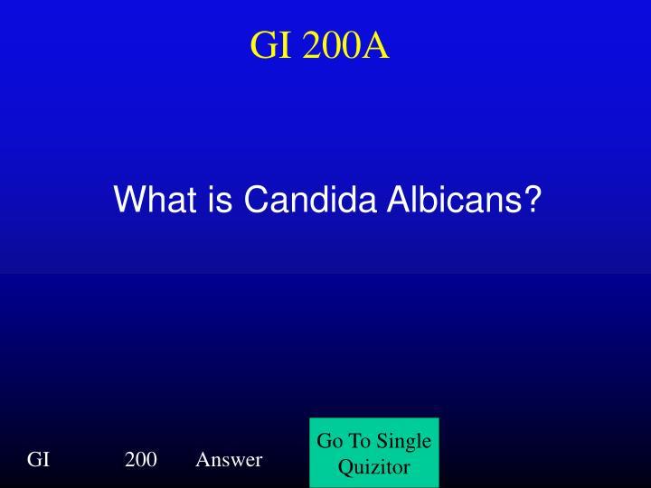 GI 200A
