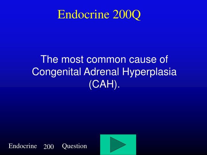 Endocrine 200Q