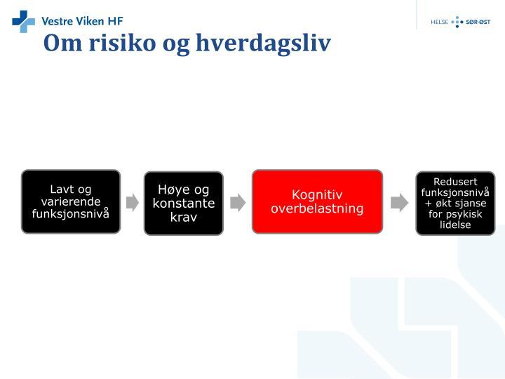 Om risiko og hverdagsliv