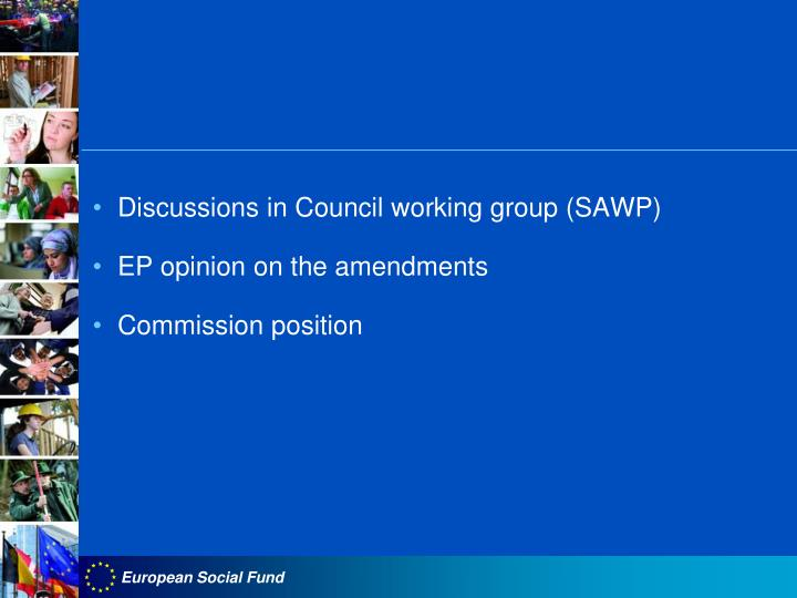 Discussions in Council working group (SAWP