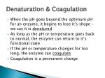 denaturation coagulation