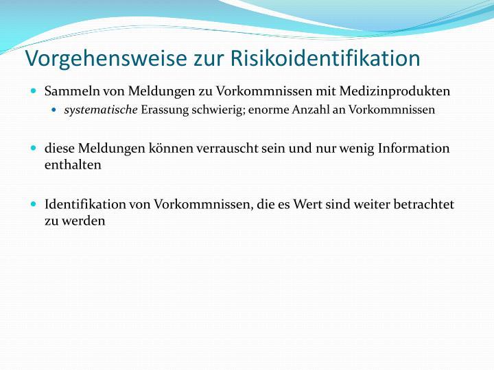 Vorgehensweise zur Risikoidentifikation