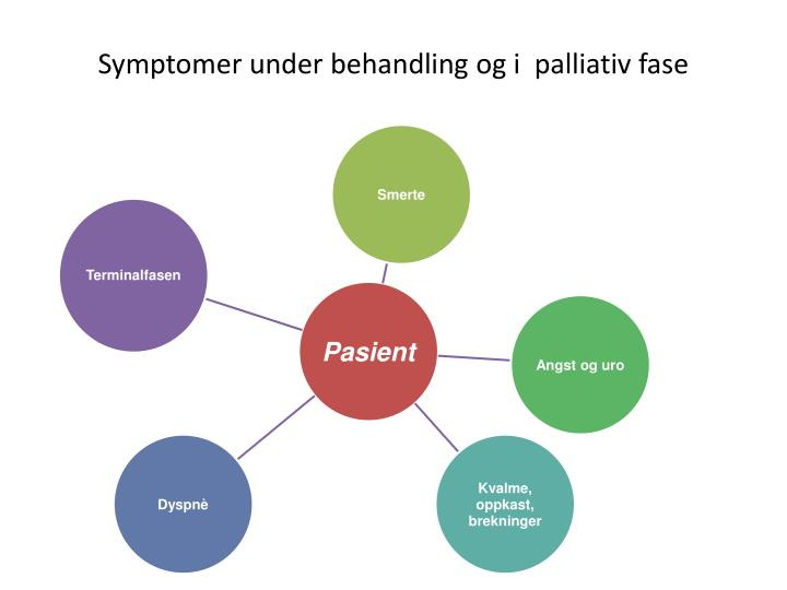 Symptomer under behandling og i  palliativ fase
