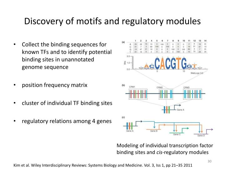 identifying cis regulatory motif in co expressed beetle Methodology we introduce the cremag (cis-regulatory elements in the  the  promoters of co-expressed genes facilitates the identification of.