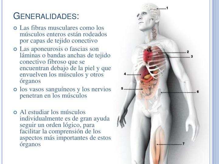 Generalidades: