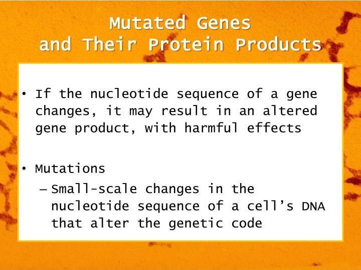 protein and mutated gene sequence Cystic fibrosis and cftr gene  in certain cases the mutated mrna is unstable and doesnèt  protein or the protein containing the aberrant sequence.