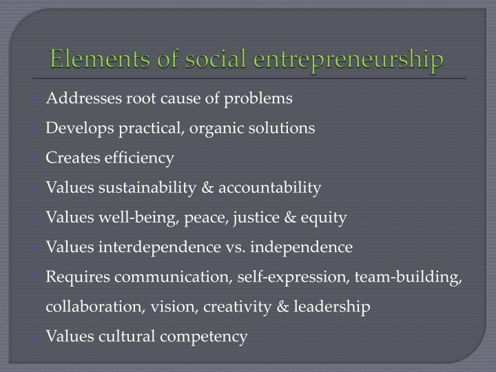 Elements of social entrepreneurship