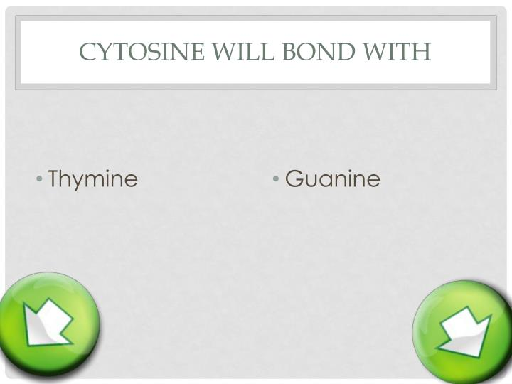 Cytosine will bond with