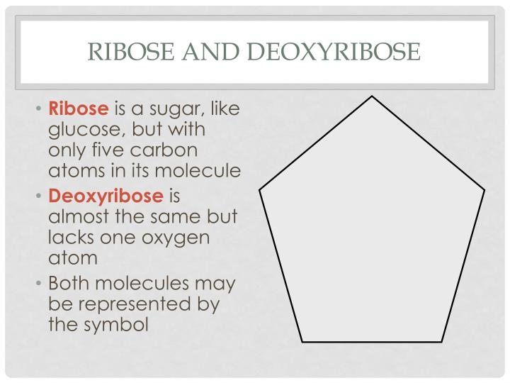 Ribose and