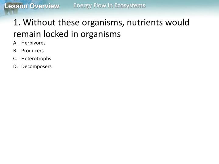 1. Without these organisms, nutrients would remain locked in organisms