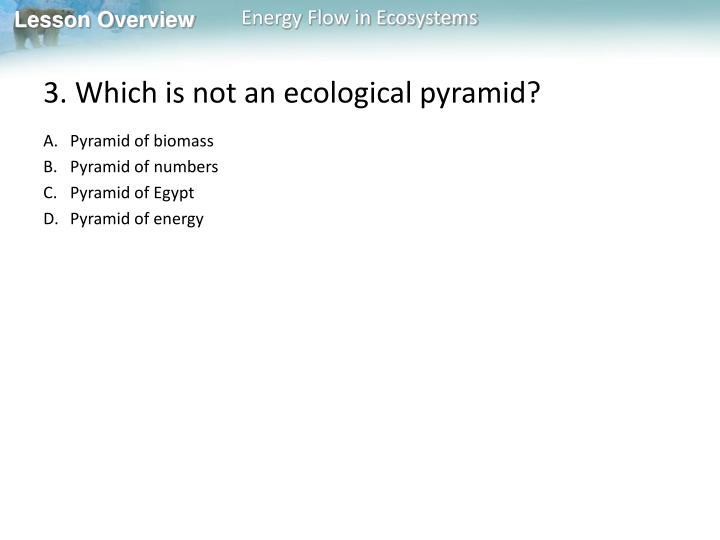 3. Which is not an ecological pyramid?