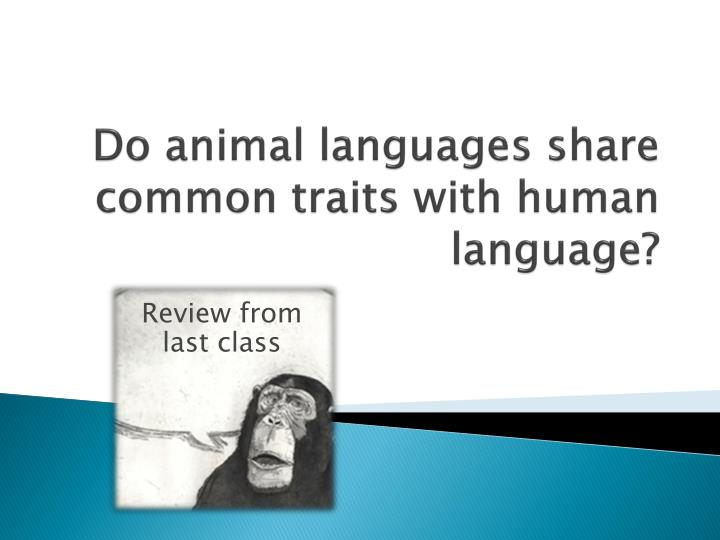 Do animal languages share common traits with human language?