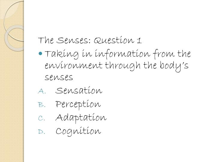 The Senses: Question 1