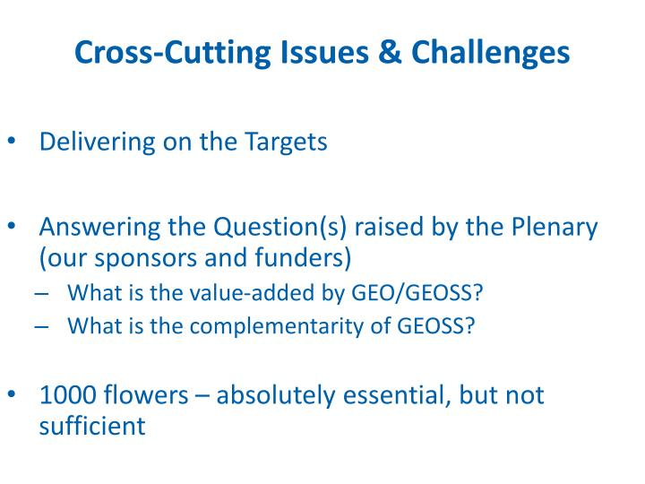Cross-Cutting Issues & Challenges