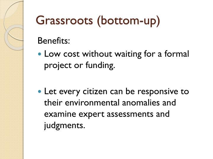 Grassroots (bottom-up)