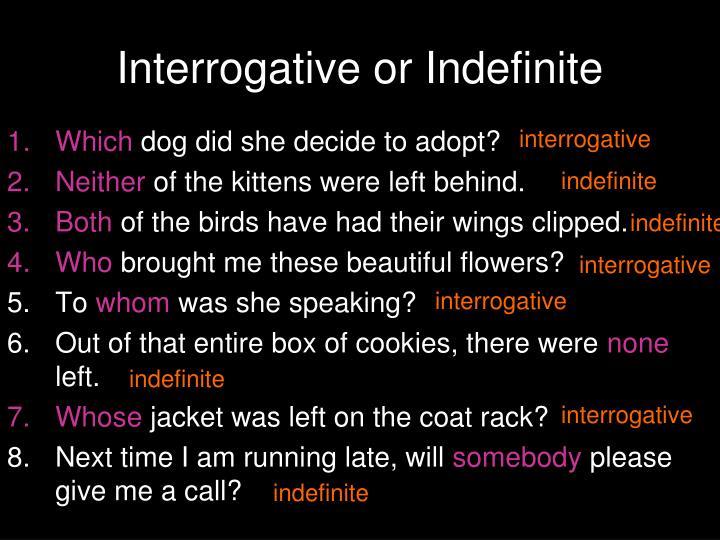 Interrogative or Indefinite