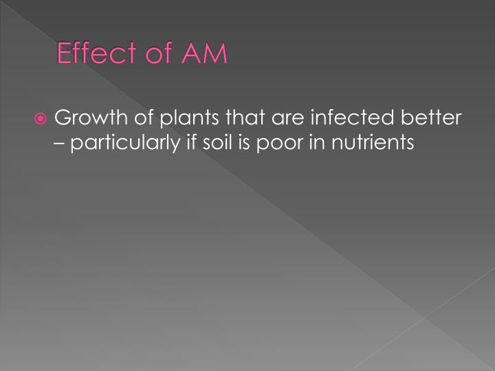 Effect of AM