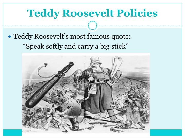 Teddy Roosevelt Policies