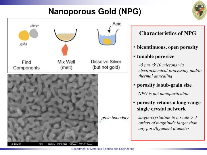Nanoporous gold npg