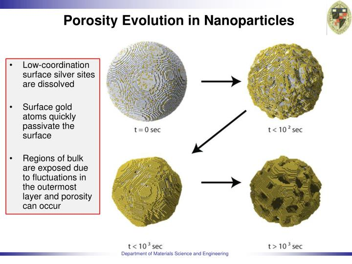 Porosity Evolution in Nanoparticles