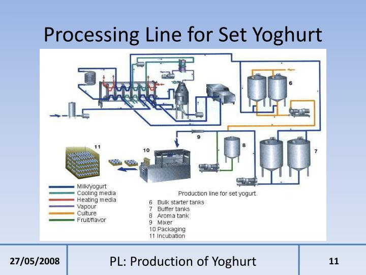 Processing Line for Set Yoghurt