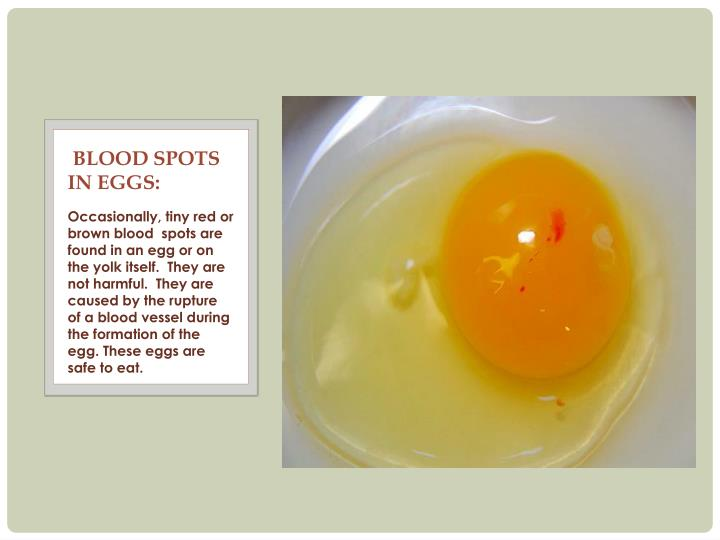 Blood spots    in Eggs: