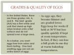 grades quality of eggs