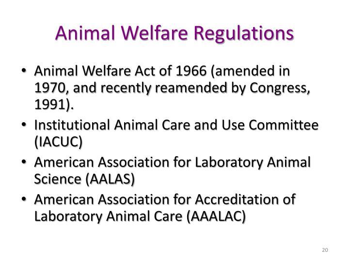 Animal Welfare Regulations