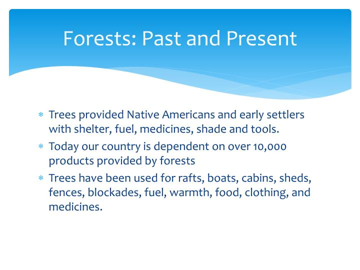 Forests: Past and Present