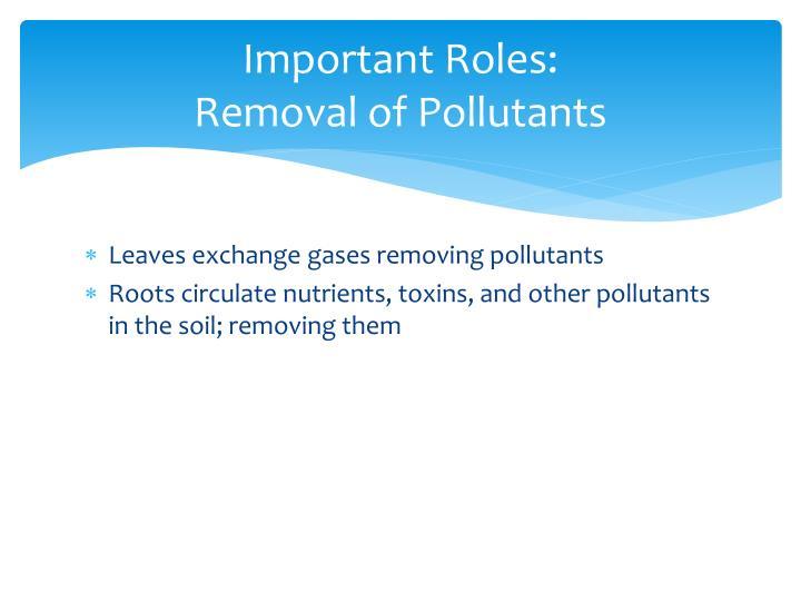 Important Roles: