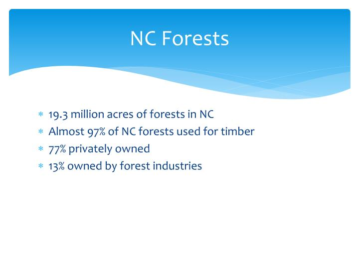 NC Forests
