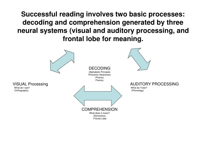 Successful reading involves two basic processes:  decoding and comprehension generated by three neural systems (visual and auditory processing, and frontal lobe for meaning.