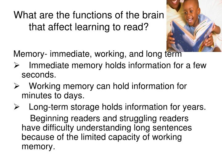 What are the functions of the brain