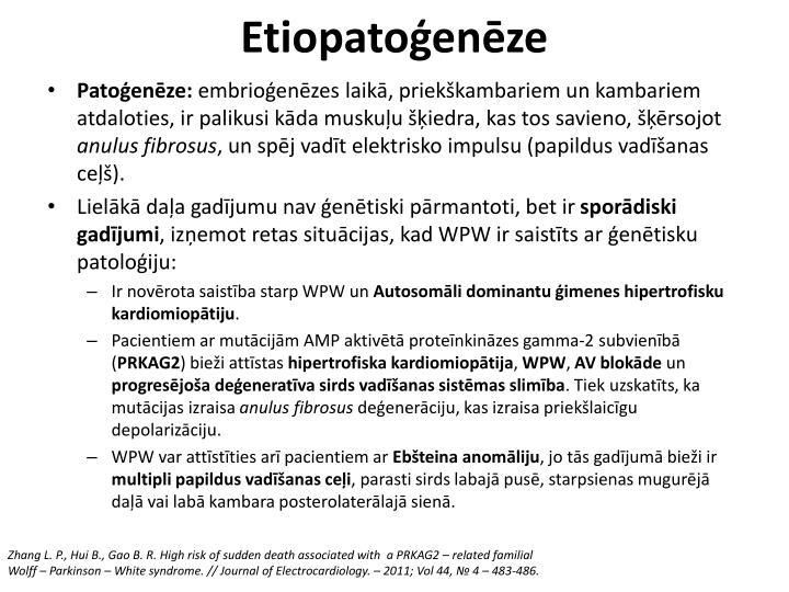 Etiopatoģenēze