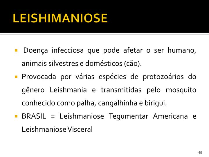 LEISHIMANIOSE