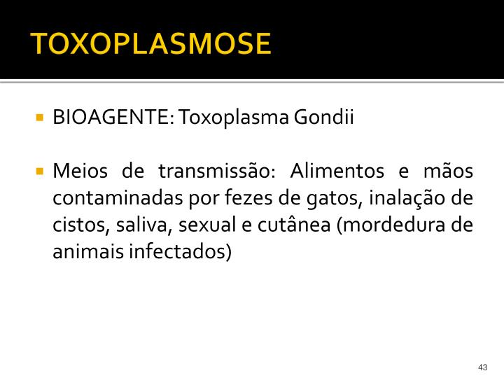 TOXOPLASMOSE