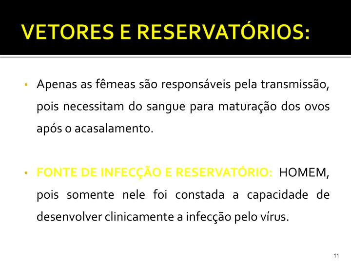 VETORES E RESERVATÓRIOS: