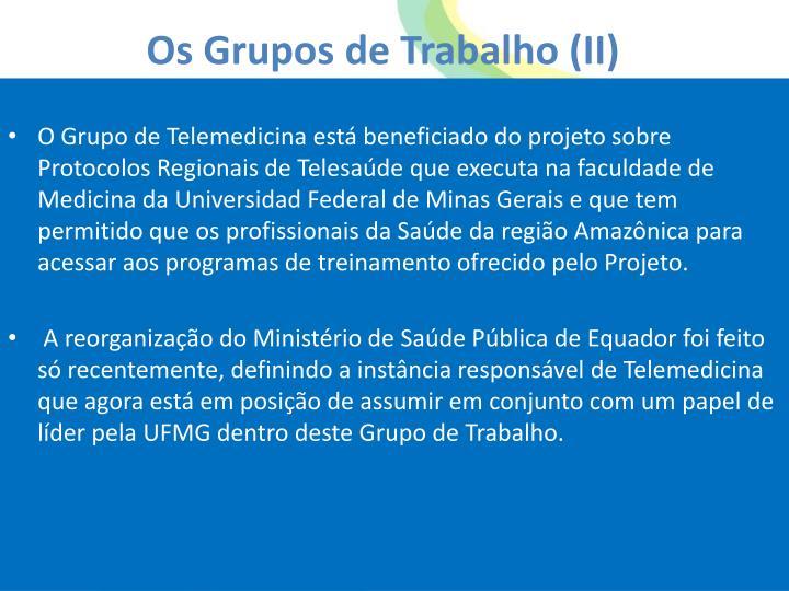 Os Grupos de Trabalho (II)