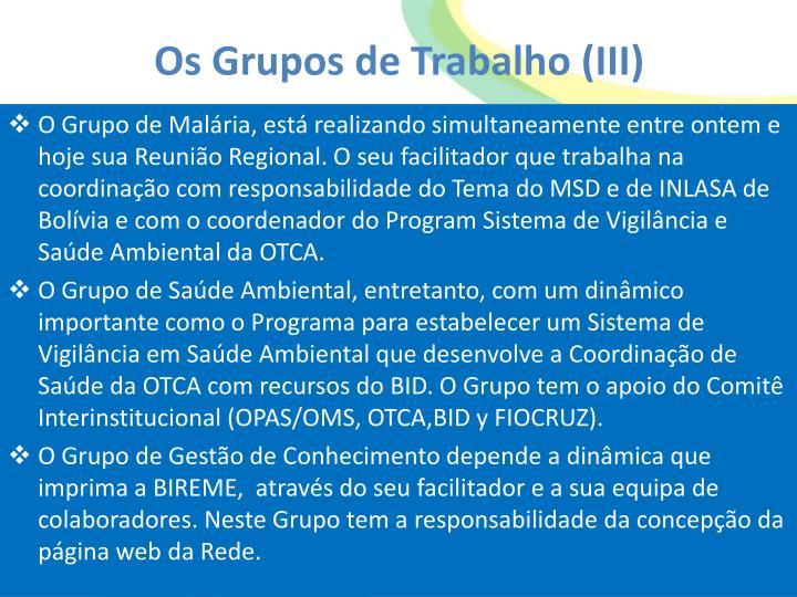 Os Grupos de Trabalho (III)