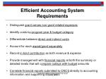 efficient accounting system requirements