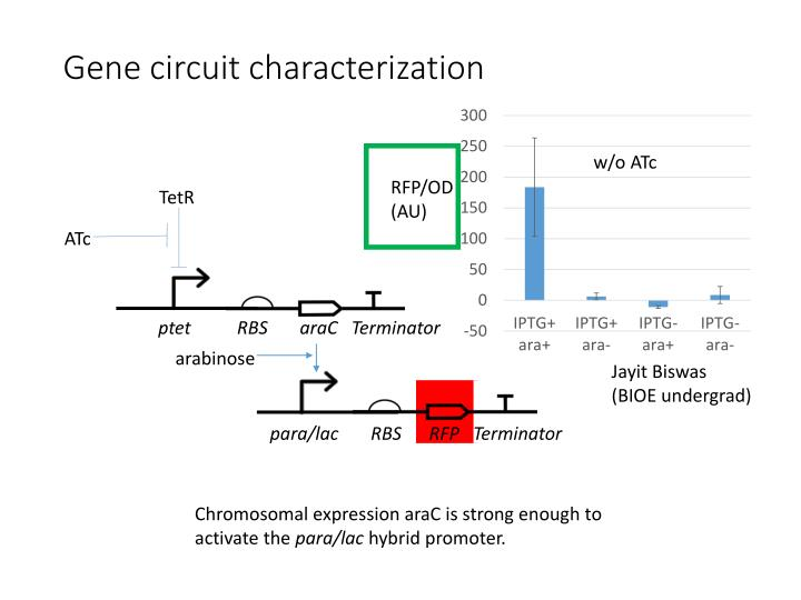 Gene circuit characterization