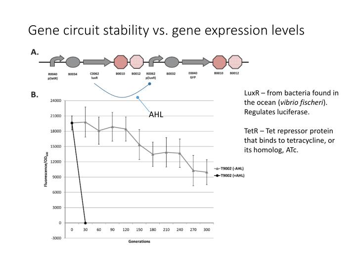 Gene circuit stability vs. gene expression levels